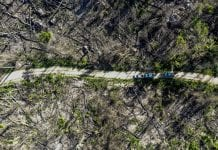 desmatamento ilegal