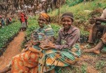 Plantio de árvores na África