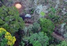 desmatamento mata atlântica