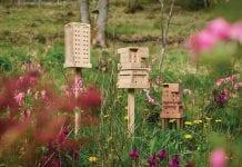 abrigos abelhas