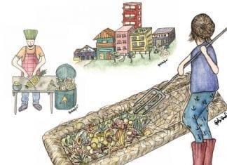 compostagem lixo orgânico