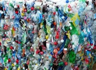 reciclagem pet