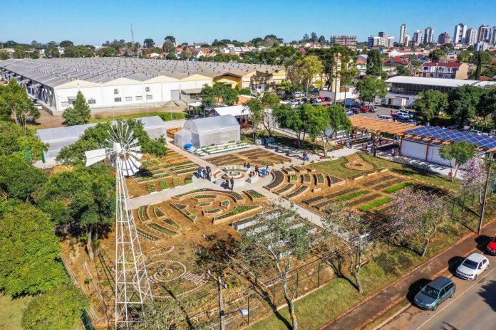 agricultura urbana em curitiba