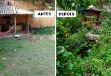 Jardim Agroecológico Andrea Pesek