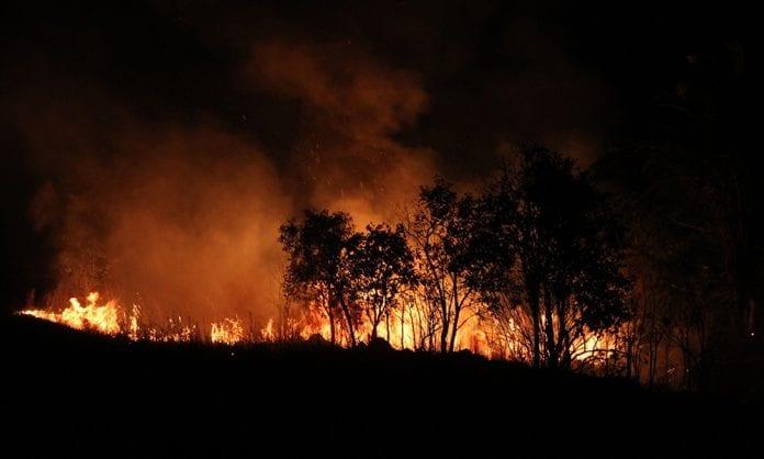 desmatamento queimada