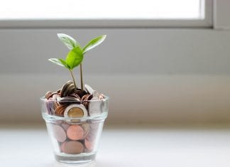 vida financeira sustentável