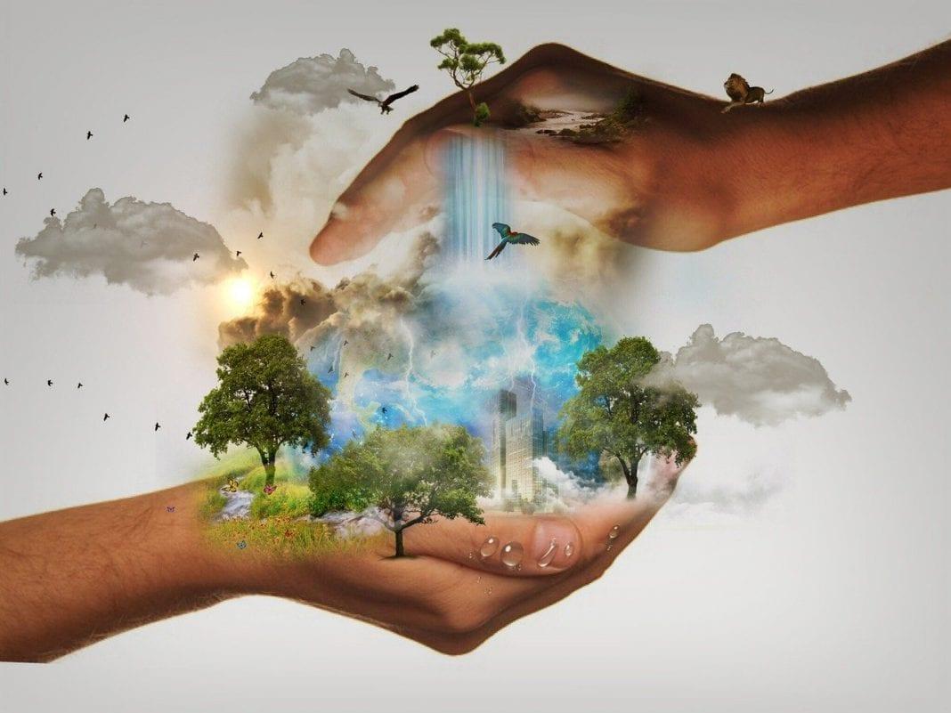 pesquisa meio ambiente