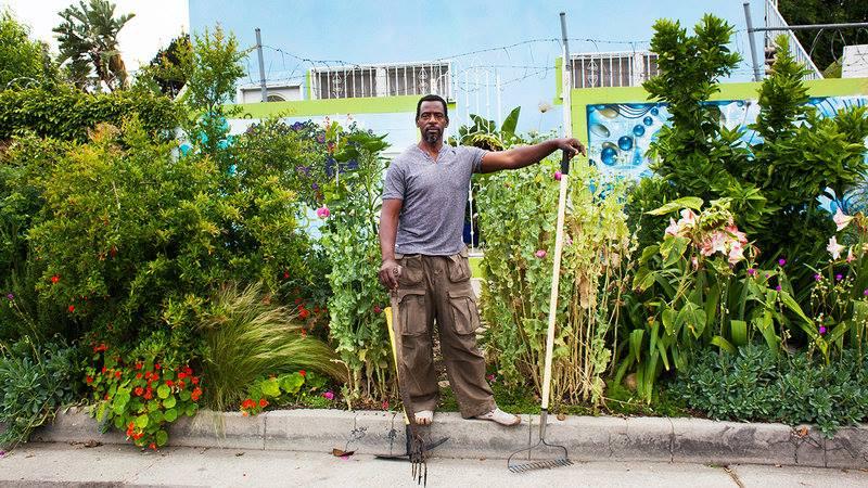 gangsta gardener