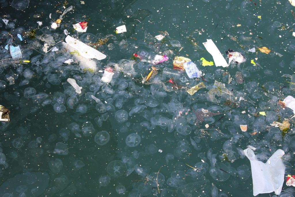 plástico oceanos