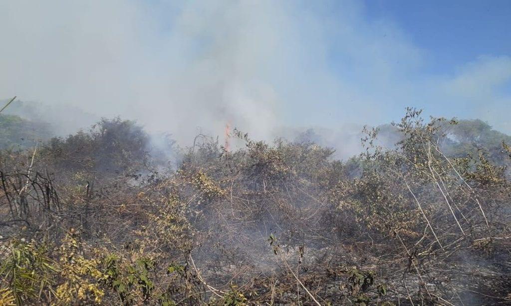 incêndios Pantanal