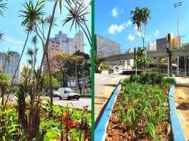 Jardins de Chuva em São Paulo