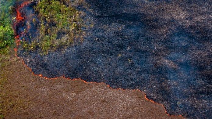 auditoria política desmatamentos queimadas