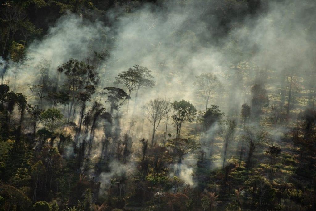 queimada amazônia