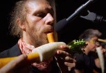 orquestra vegetal