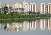 despoluição rio pinheiros