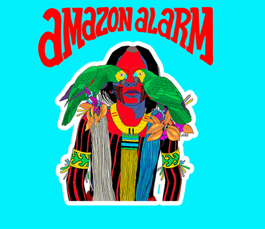 amazon alarm