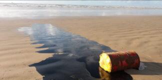 óleo nordeste
