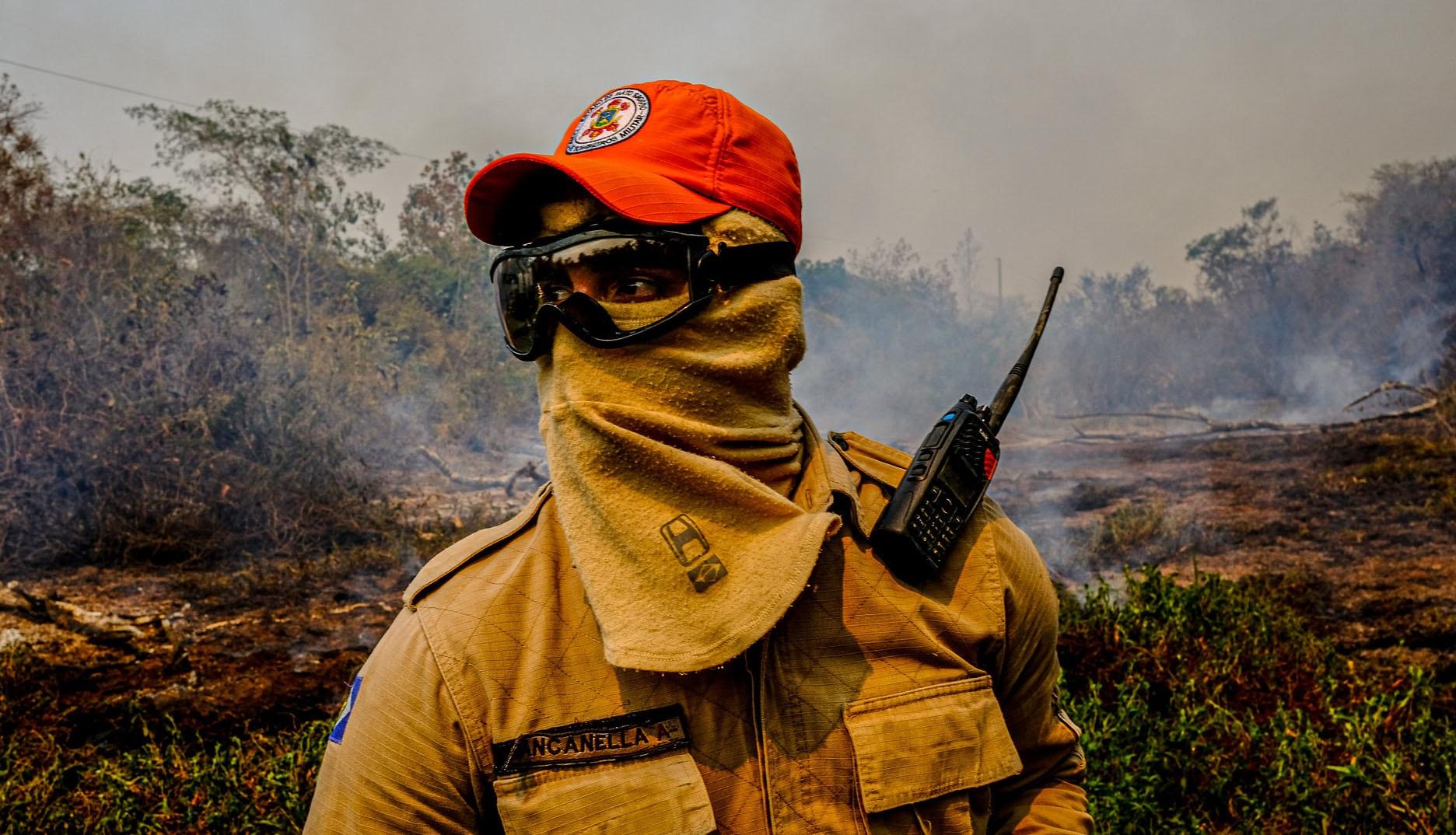 fogo Pantanal