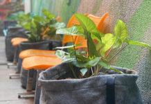 PlantBag vaso reciclado