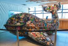 esculturas de lixo AquaRio