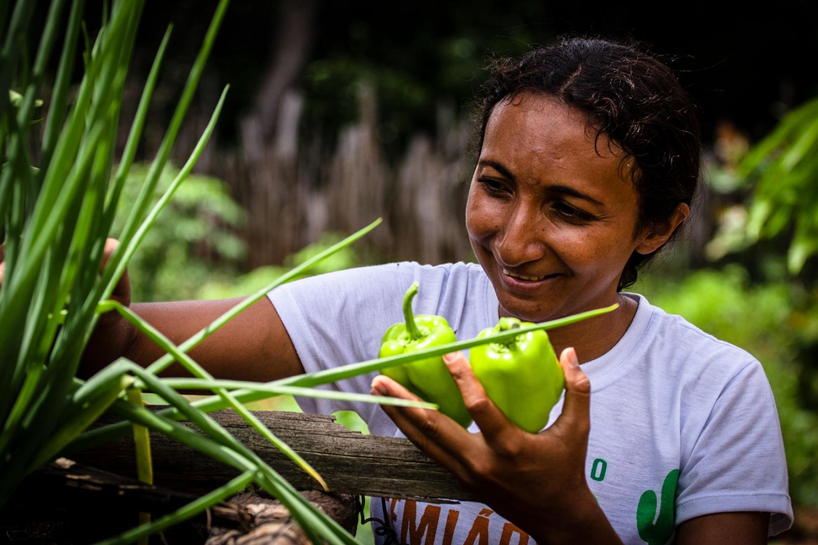 Produzindo alimentos no quintal, moradora do Piauí vira referência gastronômica