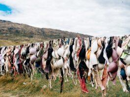 lingerie roupas íntimas sustentável