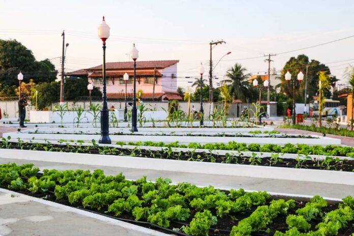 praça agroecológica