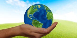 mentoria negócios sustentáveis
