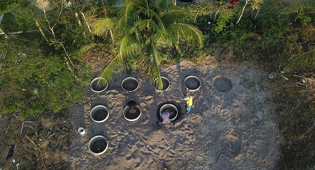 compostagem beach club