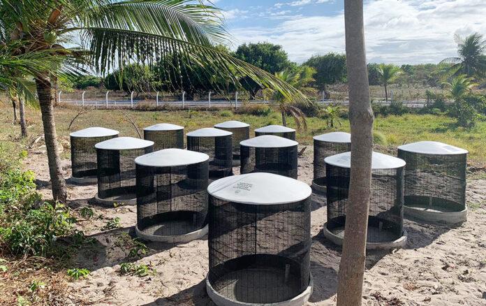 compostagem beach club fortaleza
