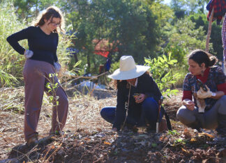 curso de permacultura