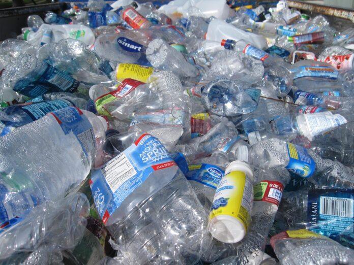 estudo sobre plástico