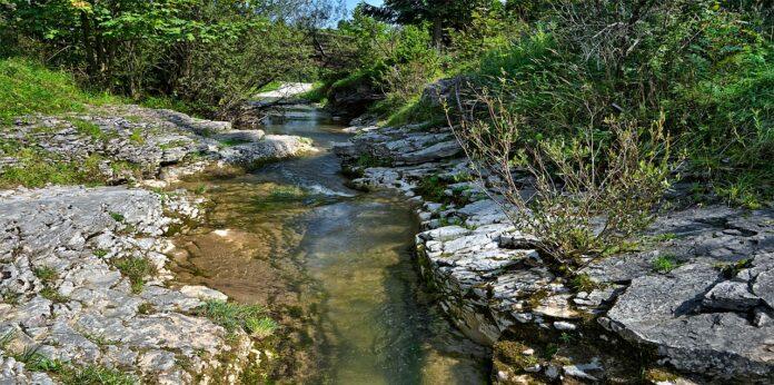manejo regenerativo de água