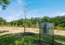 memorial parque do carmo