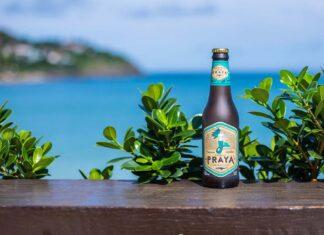 cerveja praya carbono neutro