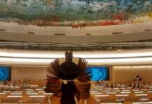 ONU indígenas