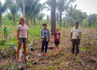 familia agrofloresta