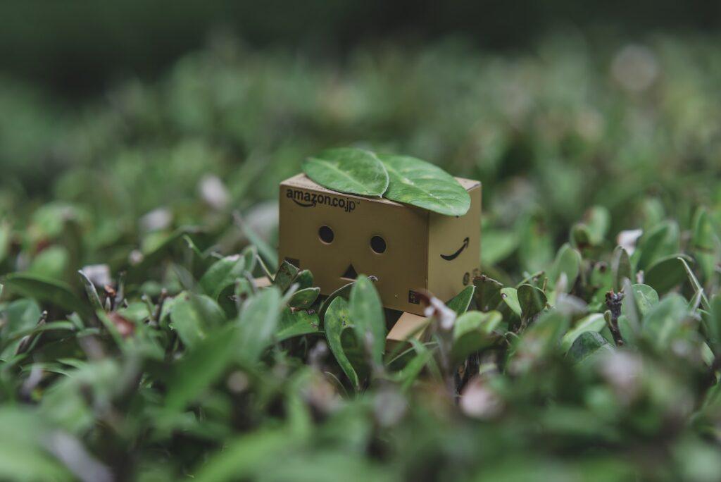 papelão jardinagem