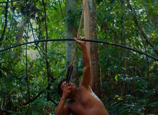 A Última Floresta filme