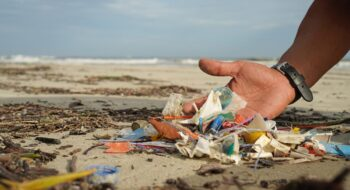Projeto Atitude pelos Oceanos limpeza de praias