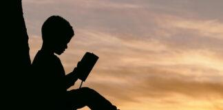 livros crianças natureza