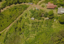agricultura regenerativa curso