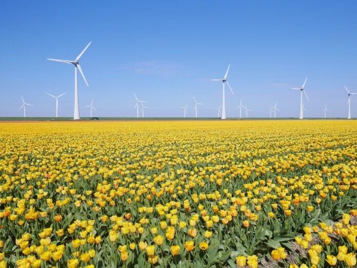 empregos energia eólica