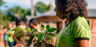 Petrobras seleção de projetos socioambientais