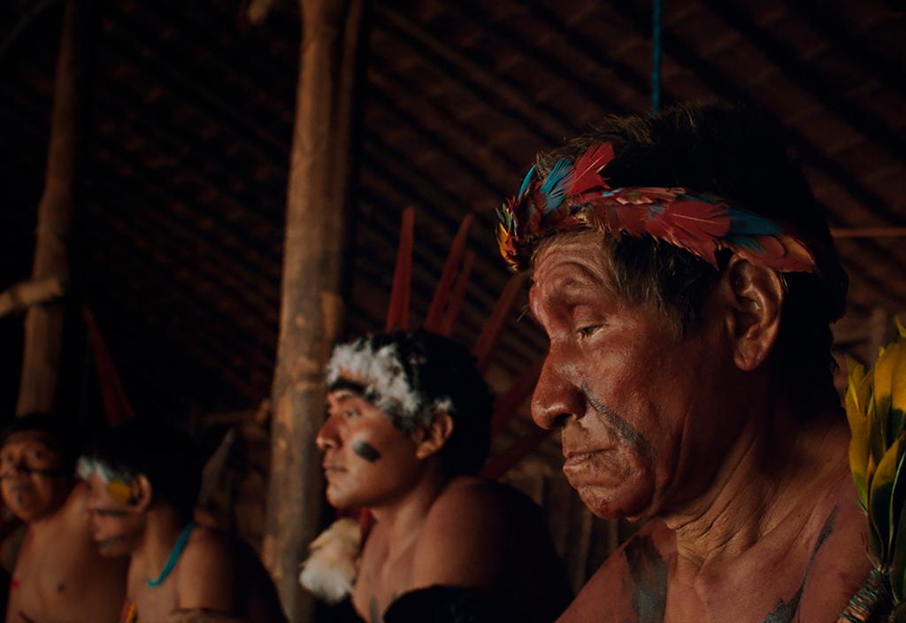 indígenas genocídio a última floresta