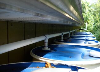 Armazenamento de água da chuva deve se tornar obrigatório em Goiânia