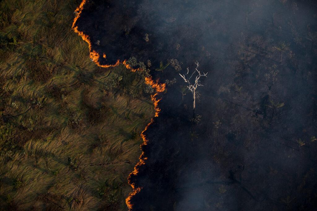 Floresta Amazônica já emite mais CO2 do que é capaz de absorver