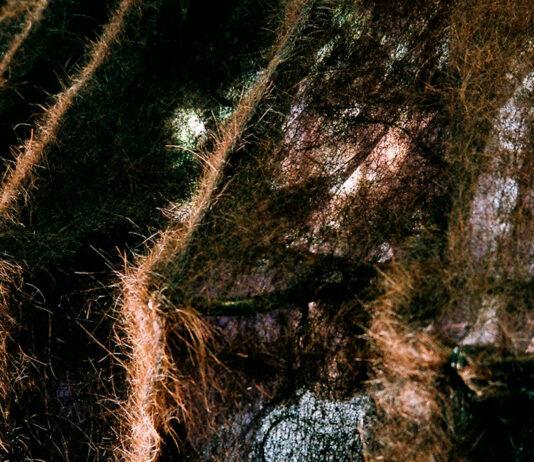 cabelo poluição