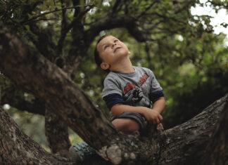 crianças natureza