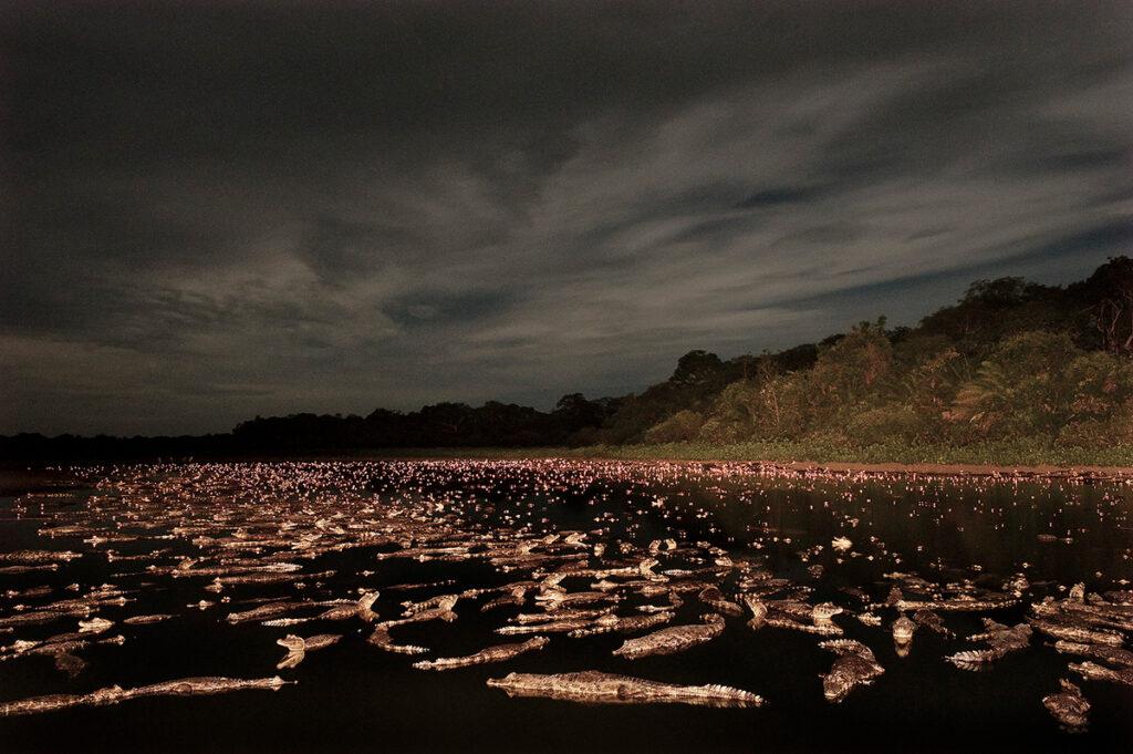 pantanal água